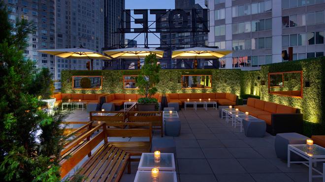 ny rooftop 3