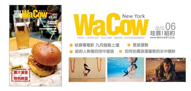 wacow_web_largebanner