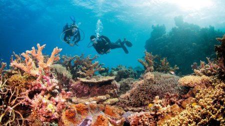 great-barrier-reef002