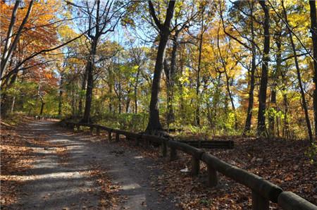NY Weekend Hiking4